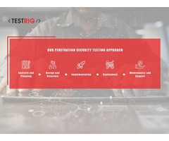Penetration Testing Company in UK-Testrig Technologies