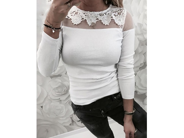 Lace Mesh Insert Casual Blouse | FreeAds.info