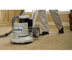 Enjoy Healthier Rooms With Reliable Carpet Cleaning In Horsham