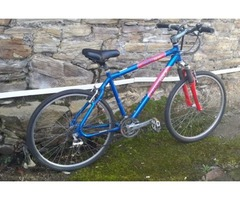 Bicycle. Ridgeback 6061 T1 Aluminium