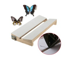 Adjustable V Shape Insects Butterfly Spreading Mounting Board Solid Wood Wings