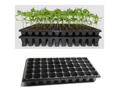 21 32 50 Holes Vegetable Flower Seeds Growing Tray Garden Plant Nursery Seedling Plate pot